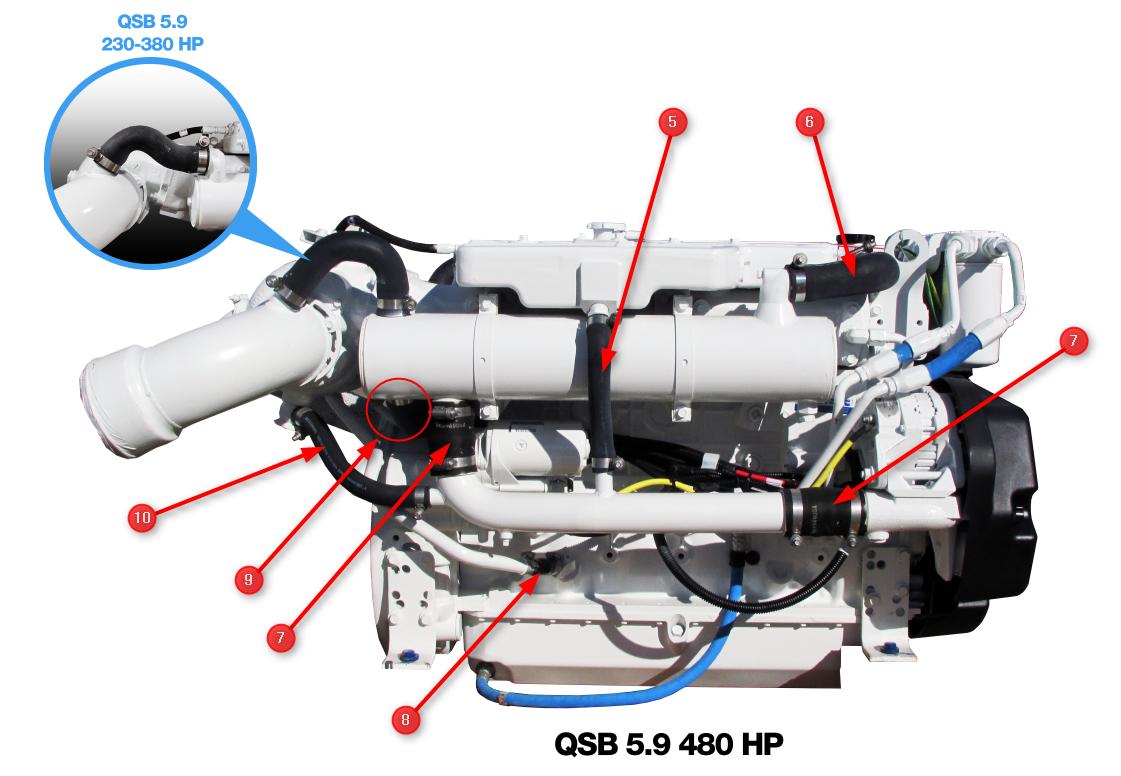 QSB 5.9 Engine Hoses